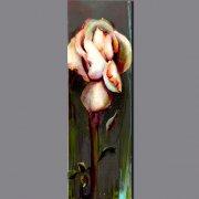 florales91.jpg
