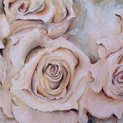 rosen64.jpg